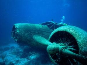 Underwater-underwater-photography-32684062-1600-1200